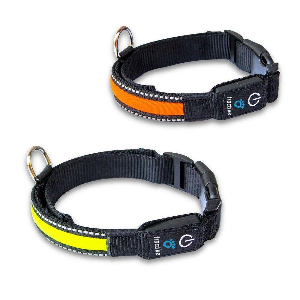 Led Dog Collar Reviews