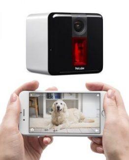 Pet Cameras