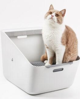 Cat Litter Trays