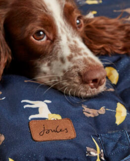 Joules Dog