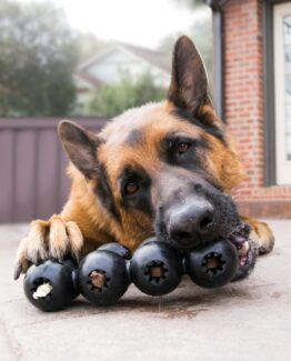 Strong Durable Dog Toys!