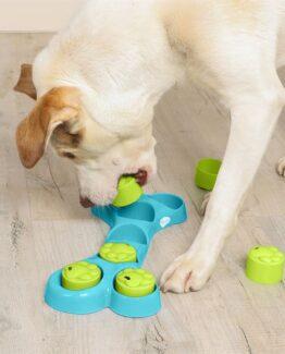 Dog IQ Games