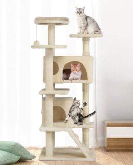 Cat Playhouse Towers!