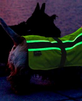 Flecta Vizlite DT Dog Jacket Yellow